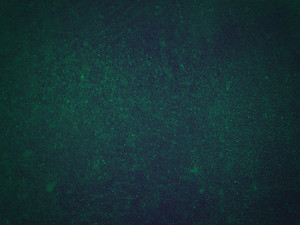 Grunge Solid Color 5 Texture