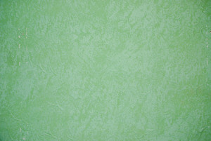 Grunge Solid Color 8 Texture