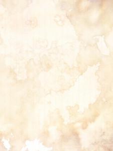 Grunge Subtle 1 Texture