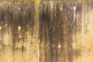 Grunge Texture 35