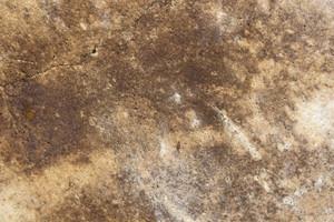 Grunge Texture 63