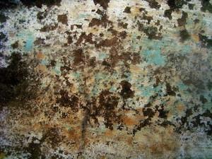 Grunge Texture 81