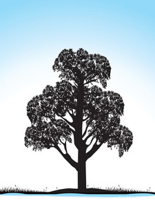 Grunge Tree Silhouette Isolated On Blue