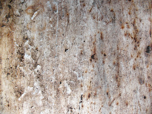 Grunge Urban 4 Texture