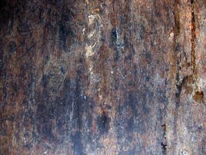 Grunge Urban 5 Texture