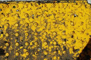 Grunge Urban 58 Texture