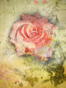 Grunge Vintage Rose Background
