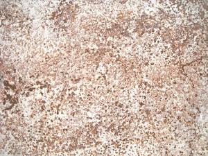 Grunge_rust_texture