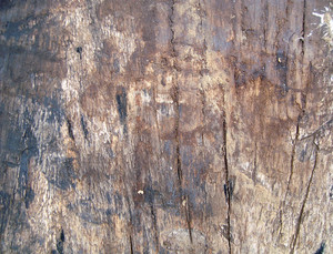 Grunge_wood_background