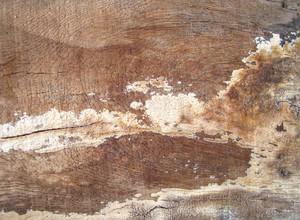 Grunge_wood_texture
