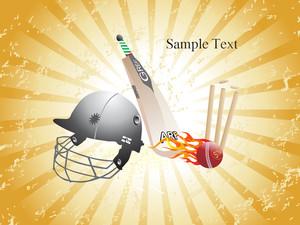 Grungy Cricket Background