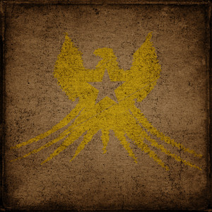 Grungy Eagle Background