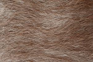 Hairy Animal Coat