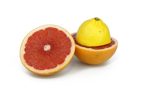 Half Cut Citrus Fruits On White Background
