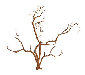 subscription library halloween dead tree design