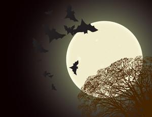 Halloween-Plakat. Vektor.