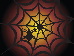 Halloween Spider On The Net