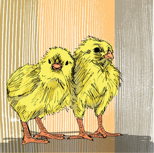 Hand Draw Sketch Of Chicken