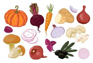 Hand Drawn Vegetables. Orange And Vinous. Vector.