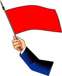 Hand Holding Flag