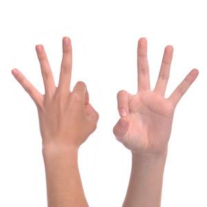 Hand Sign Ok