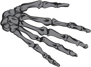 Hand Vector Element