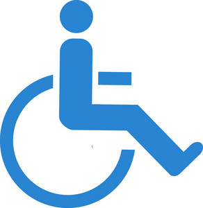 Handicapped Simplicity Icon