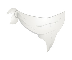 Hanky Mask Vector