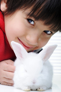 Happy child with beautiful cute Easter bunny pet