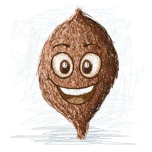 Happy False Durian Nut