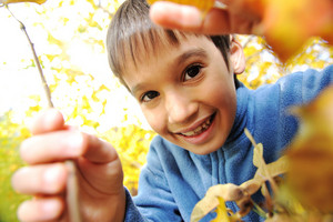 Happy kid and autumn leaves in a park