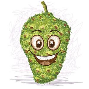 Happy Noni Fruit
