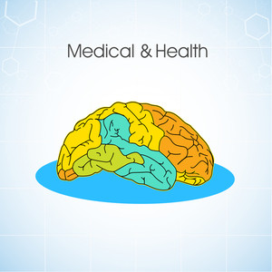 Health & Medical Concept With Colorful Human Brain On Blue Background.
