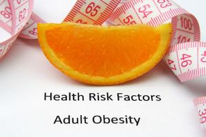 Health Risks - Obesity