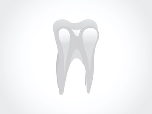 Healthy Tooth Isolated On White