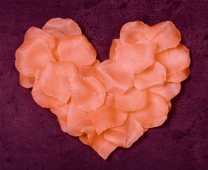 Heart from rose petals textile on grunge marsala background