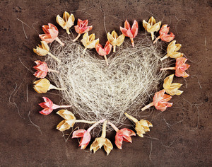 Heart of loofah and dry flowers on brown concrete background