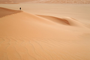 Hiker atop a sand dune in the desert