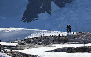 Hikers walking an icy coast past a flock of penguins
