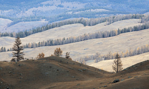 Hilly mountainside pastures in autumn