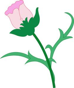 Holiday Flower