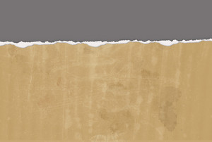Horizontal  Ripped Paper For Background