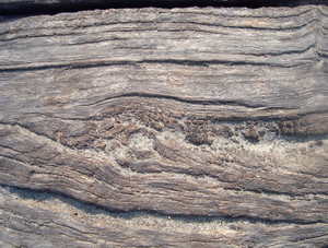 Horizontal_textured_wood
