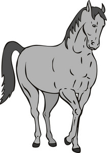 Horse Standing Retro