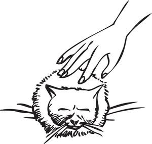 Human Hand Rubbing A Kitten.