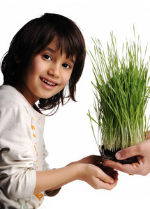 Human hands, floral giving isolated, grass concept and happy child