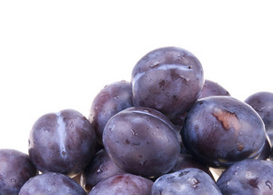 Hungarian Plum Blue Berries