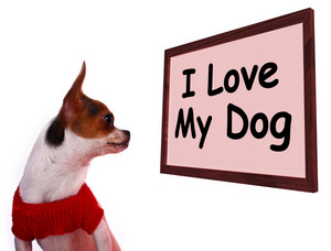 I Love My Dog Sign Showing Loving Adorable Friendship