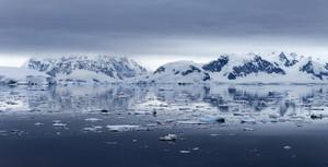 Ice floe along the snowy coast under a grey sky