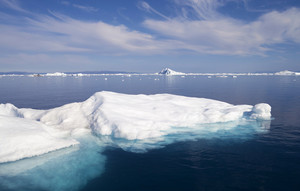Ice floe floating in deep blue water